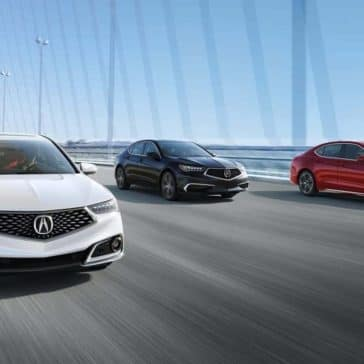 2019 Acura TLX Models Driving on a Bridge