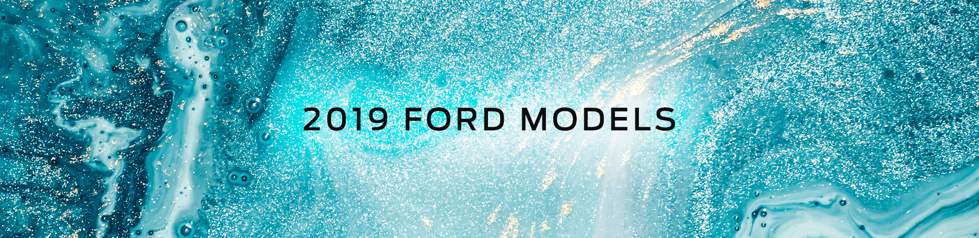 2019 Ford Models