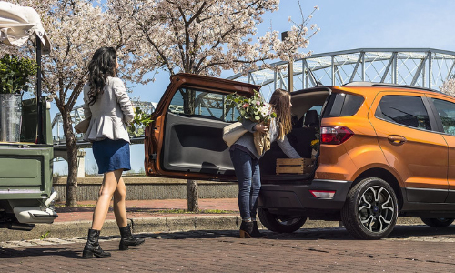 Unique Rear Swing Tailgate on the 2019 EcoSport