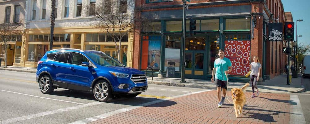 Blue Ford Escape stopped at a crosswalk, letting pedestrians with a golden retriever cross