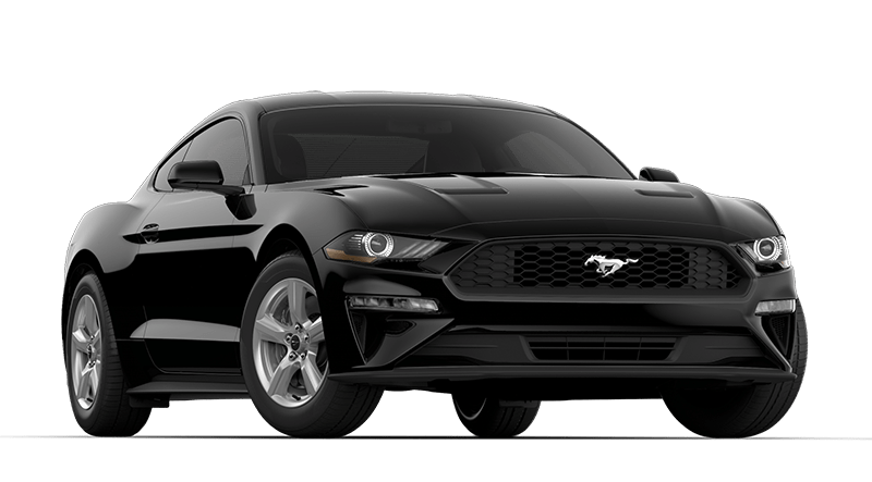 2019 Ford Mustang Black