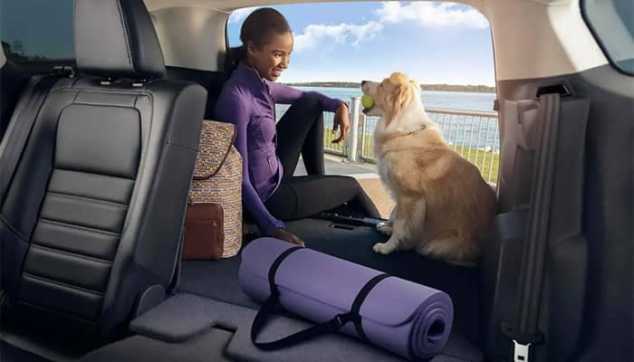Woman sitting in cargo area of Ford Escape with dog