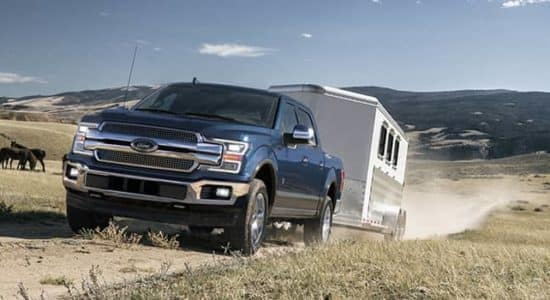 Ford F-150 Towing a Horse Trailer