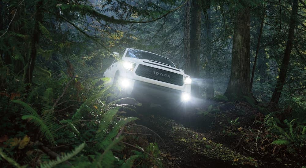 A white 2020 Toyota Tundera TRD is shown from the front, driving through the woods at night, with its lights illuminated.