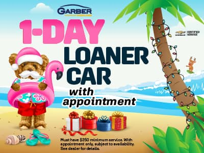 1-Day Loner Car with appointment