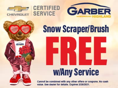 Snow Scraper/Brush FREE with any service
