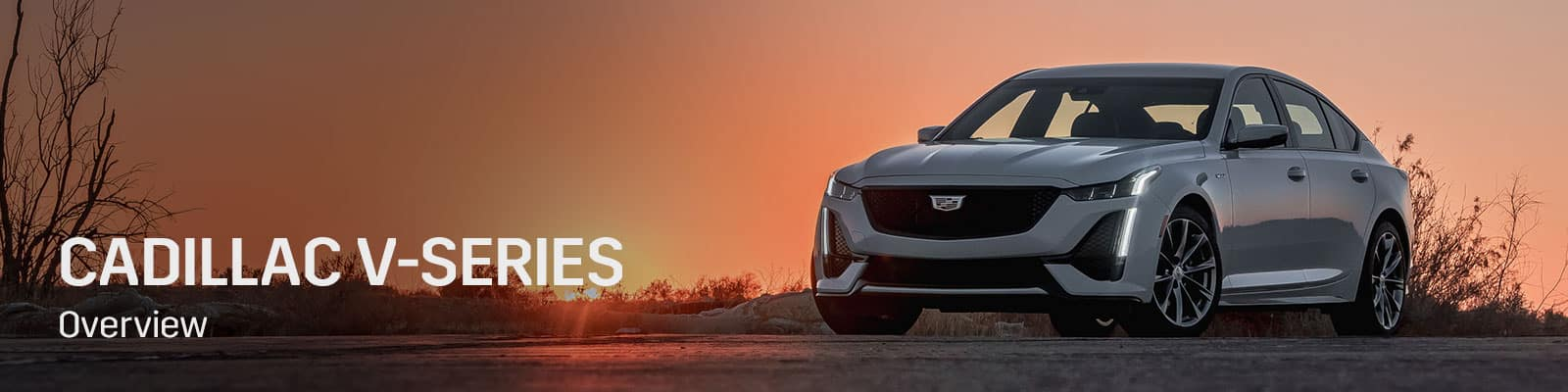 Cadillac V-Series Overview