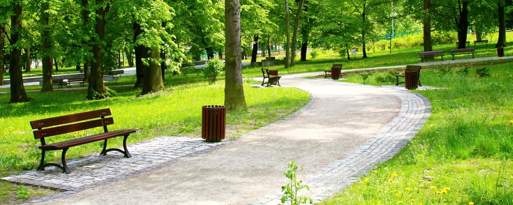 Beautiful Spring Park on sunny day with winding path and benches