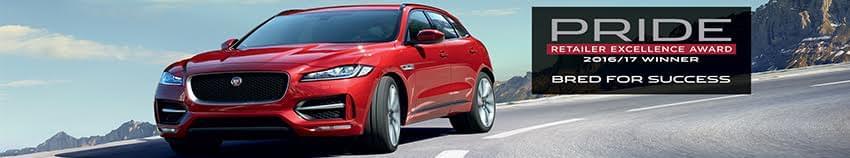 Pride of Jaguar