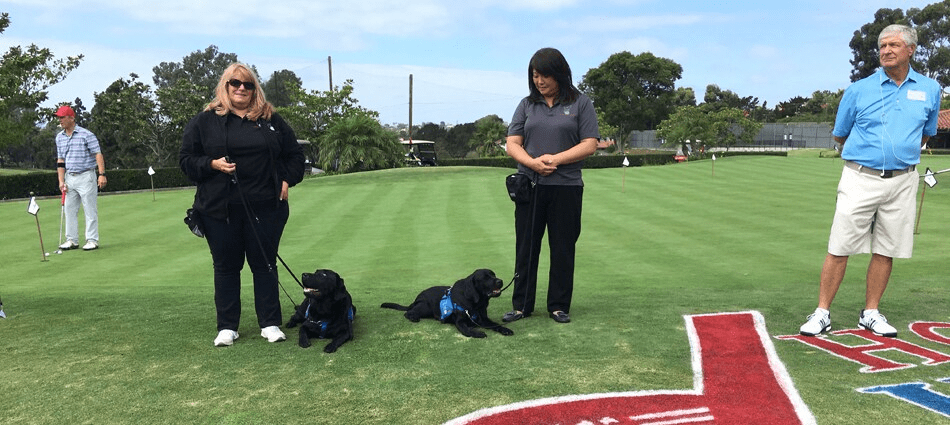 spectators with their dogs watch Holes for Heros event