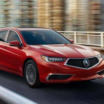 2019 Acura TLX In Motion