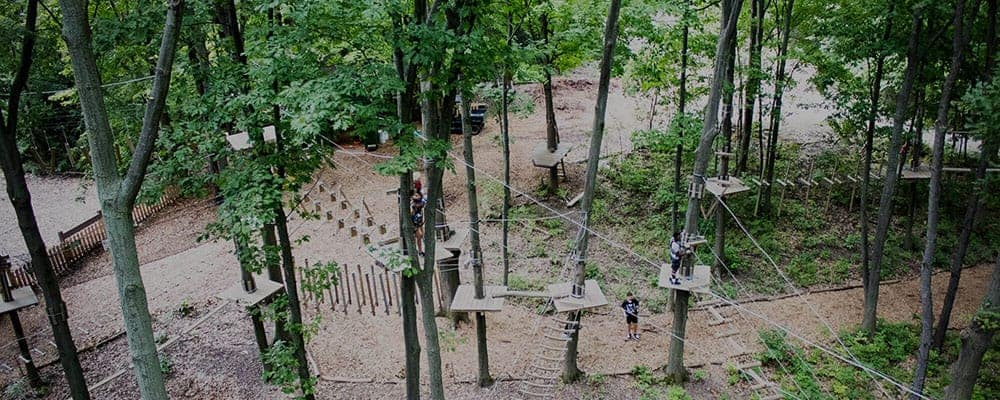 Tree Runner Adventure Park