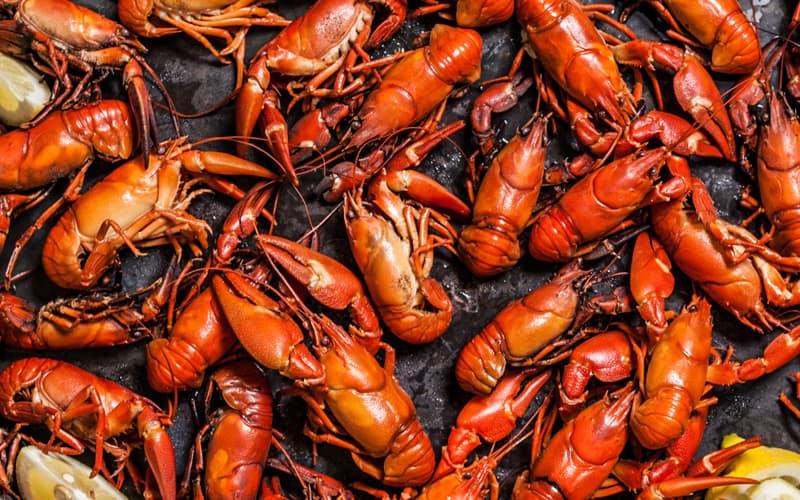 Oyster Crawfish Festival Atlanta, GA