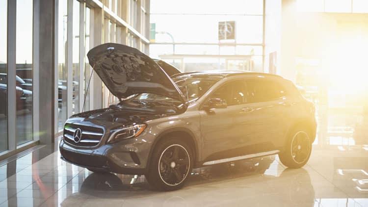 Celebration | Mercedes-Benz of Farmington