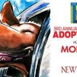 Morgan Auto Group Just One Day Pet Adoption Event