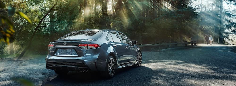 2020 Toyota Corolla XSE in the forest rear view