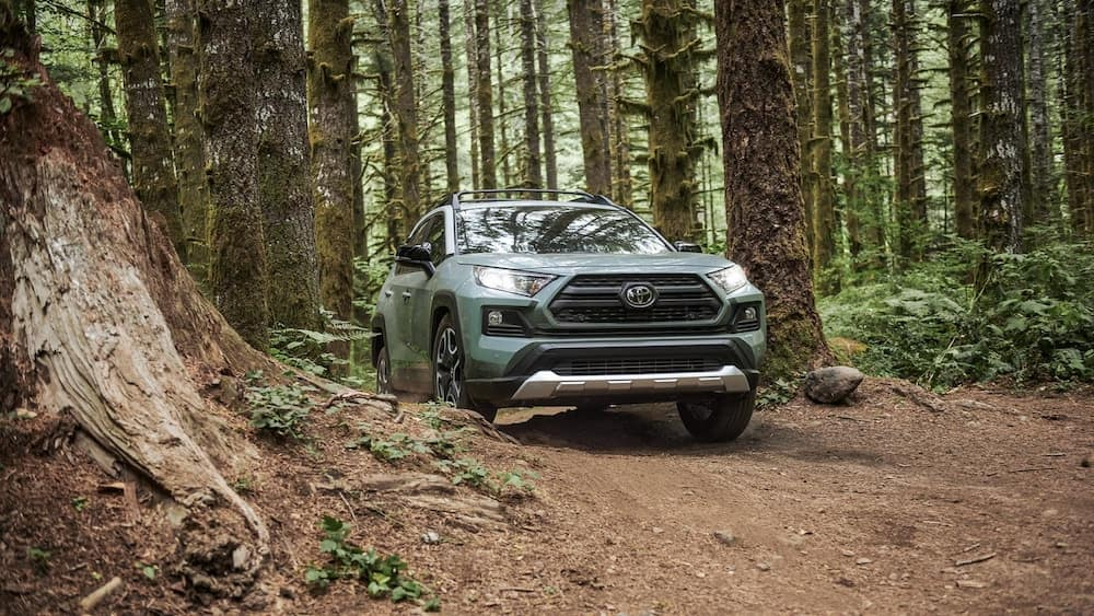 2019 Toyota RAV4 in a forest