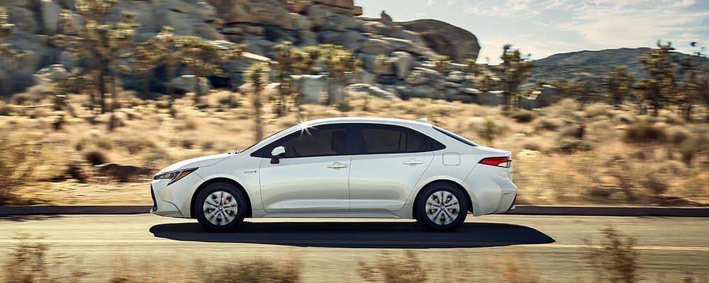 corolla driving on desert highway
