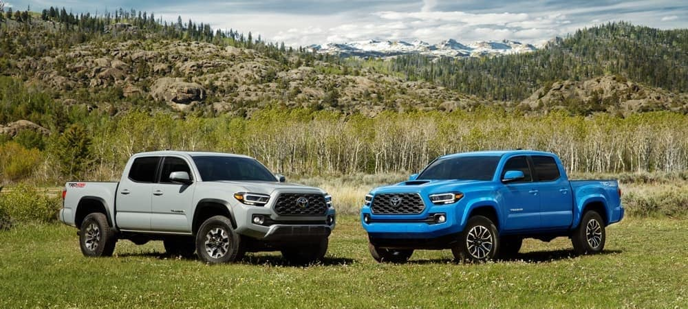2020 toyota tacoma silver and blue